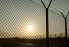 Adavale Barbed wire fencing 2